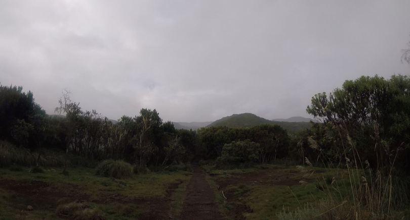 first moorland